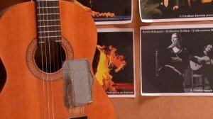 flamenco-img4